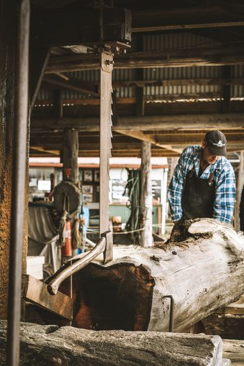 A pining tradition at Morrison's Sawmill, Strahan