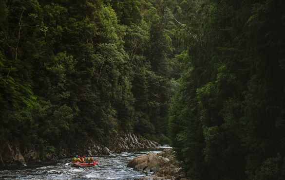 Rafting the King River, Queenstown